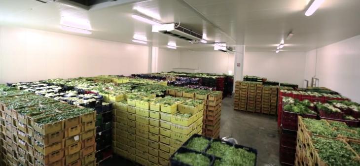 Cold Storage of Fresh Produce