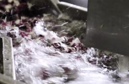 Washing - Turbulent Water