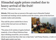 Apple prices crashed