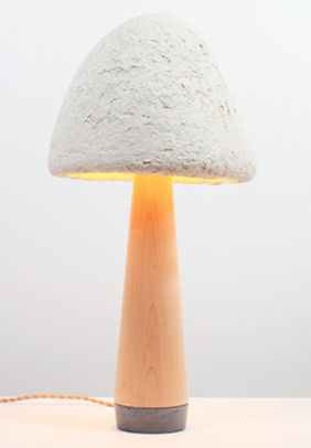 Mold prepared using mushrooms and agriculture waste