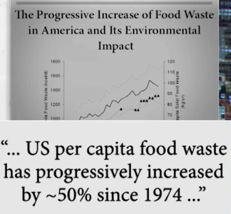 Food Waste Newsfeed